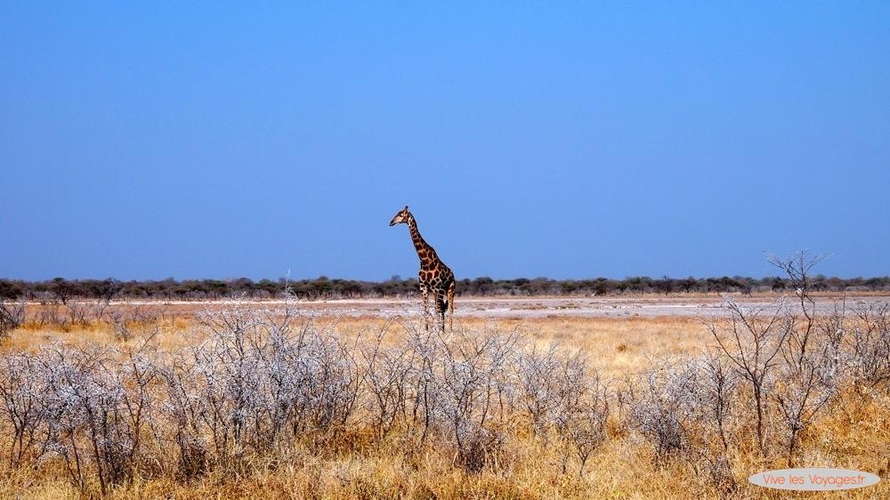 Namibie008
