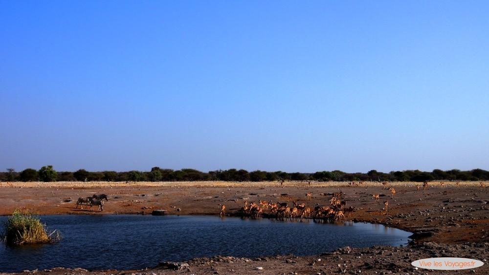 Namibie009