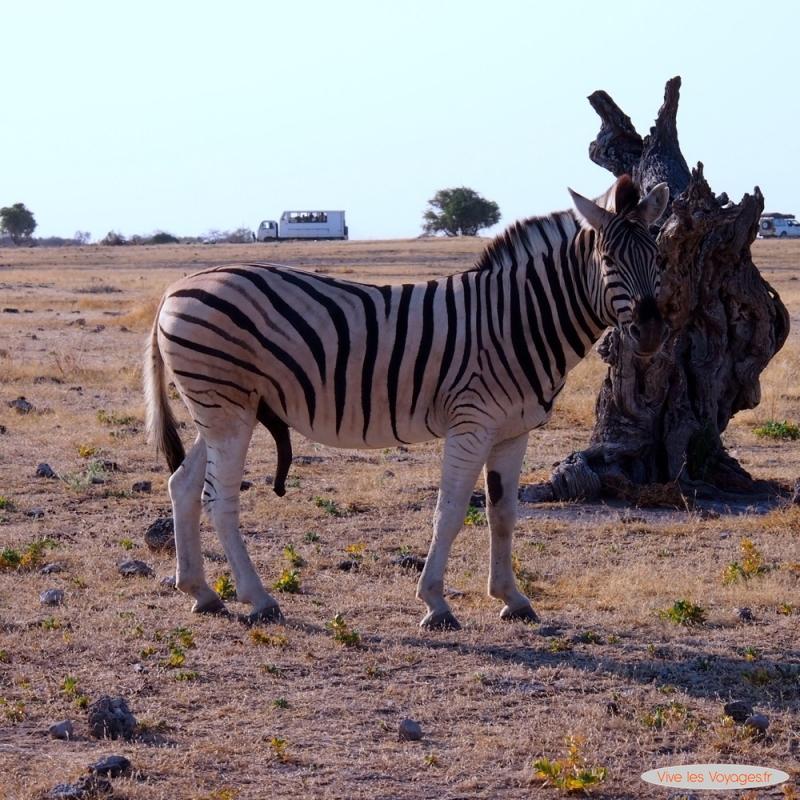 Namibie010