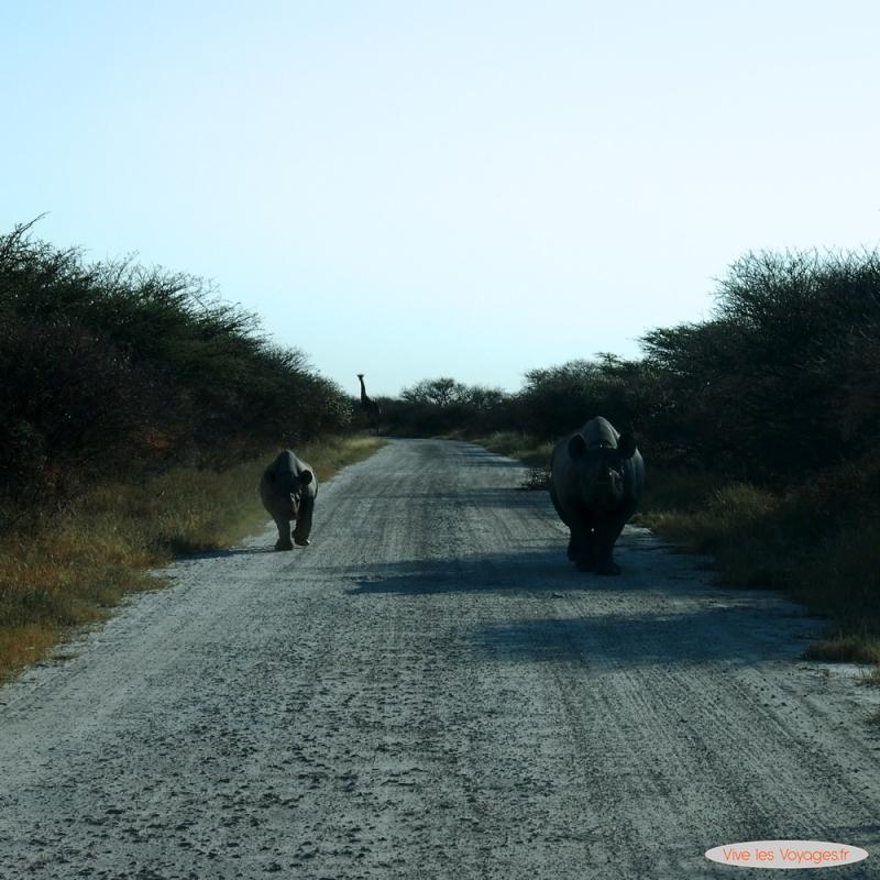 Namibie024