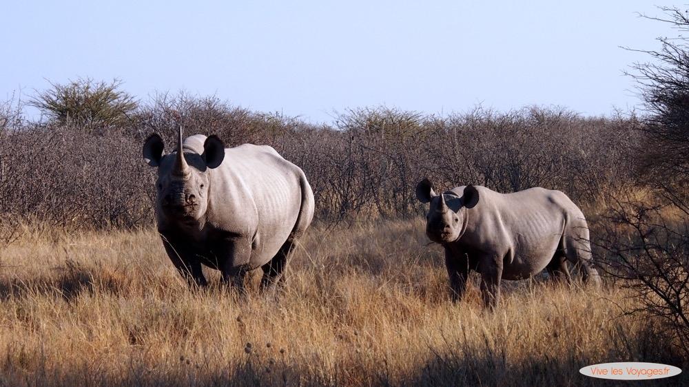 Namibie026