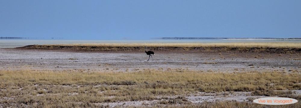Namibie033