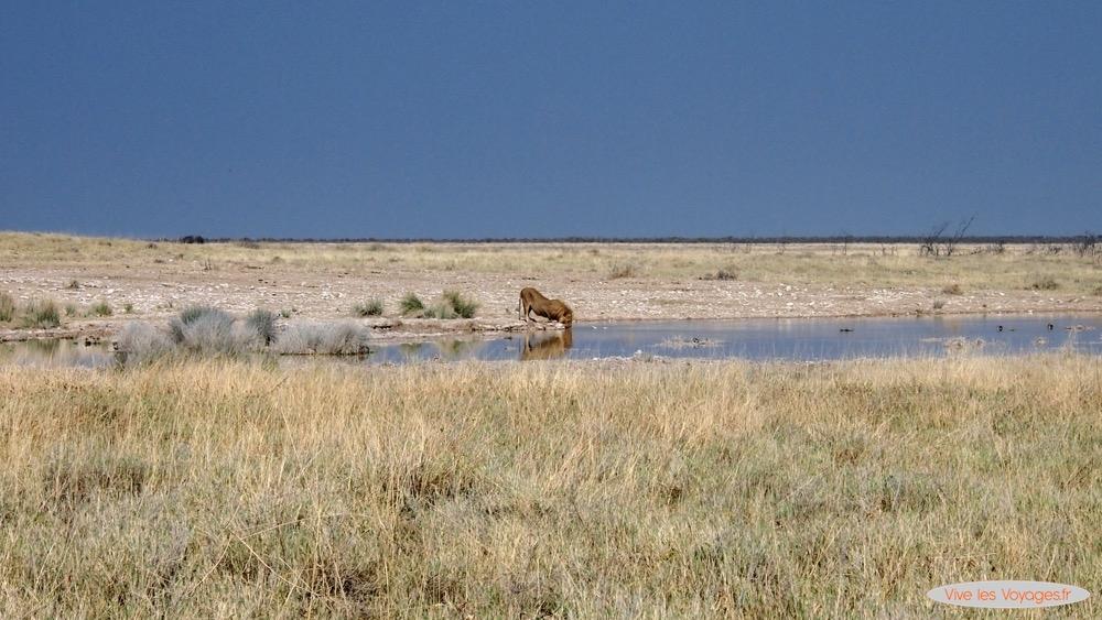 Namibie043