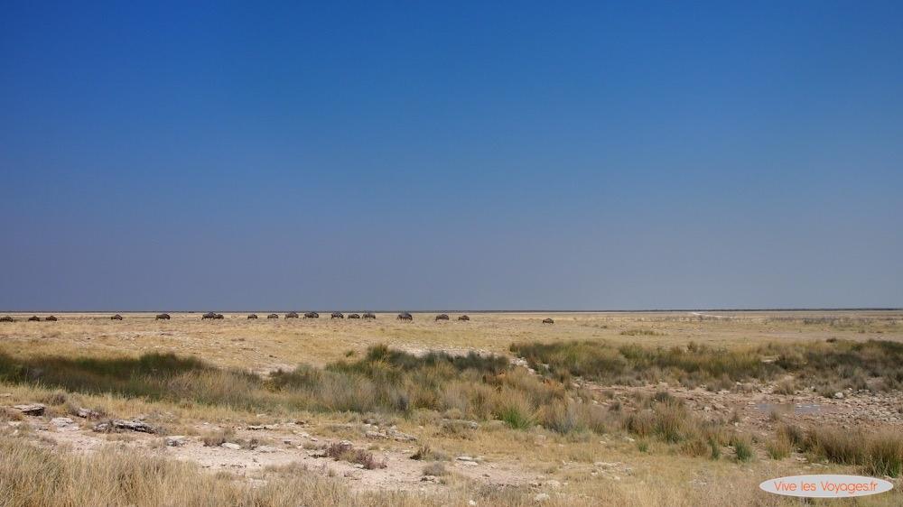 Namibie044