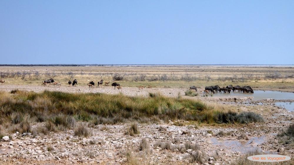 Namibie047