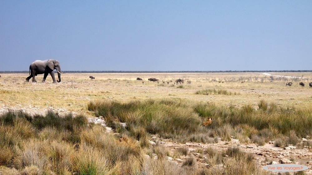 Namibie050