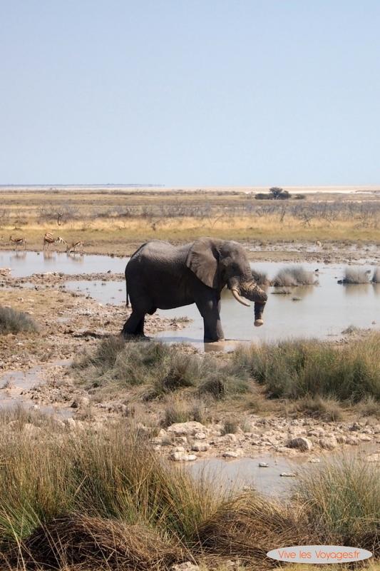 Namibie051