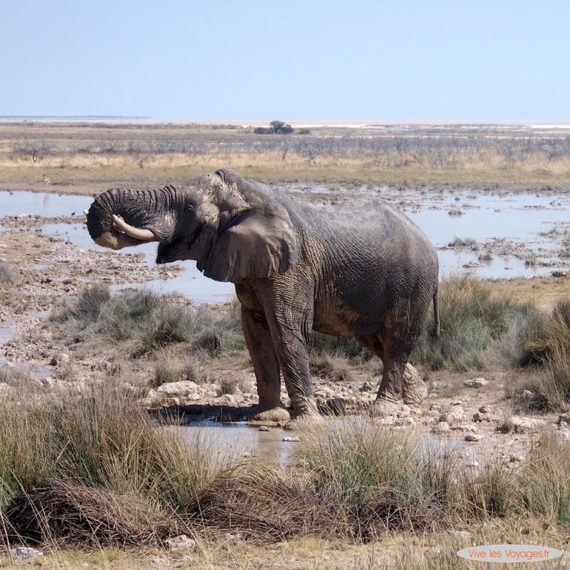 Namibie053