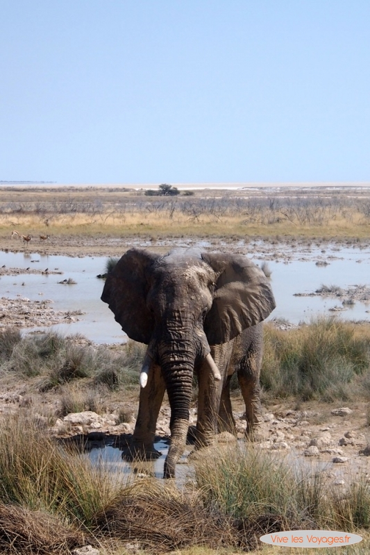 Namibie054