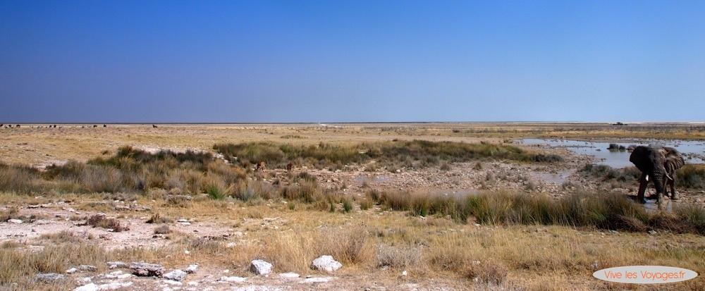 Namibie055