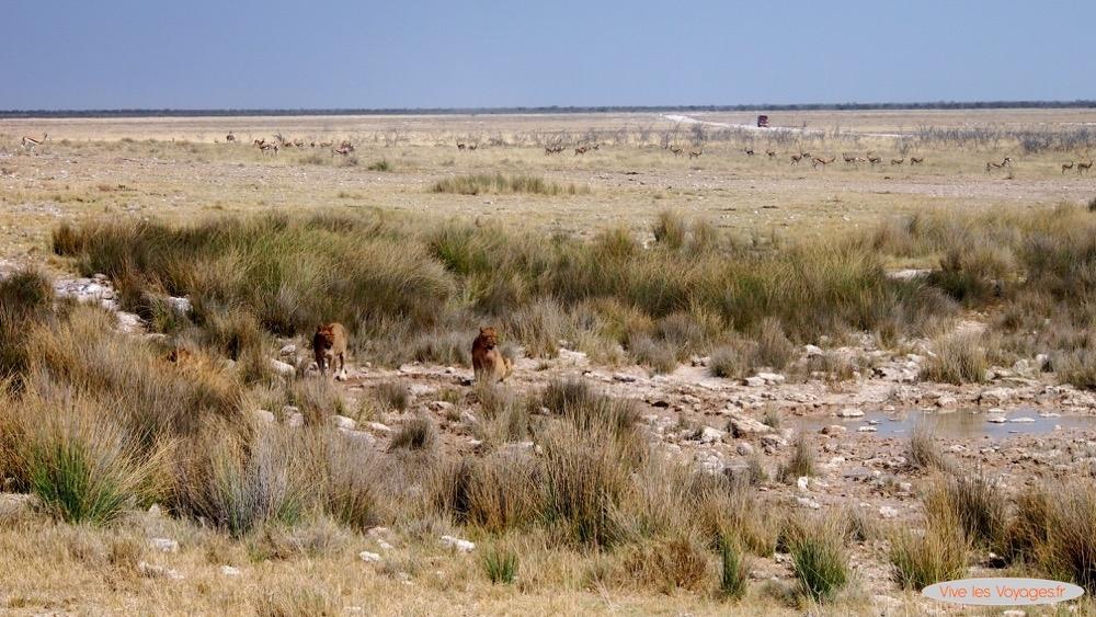 Namibie056