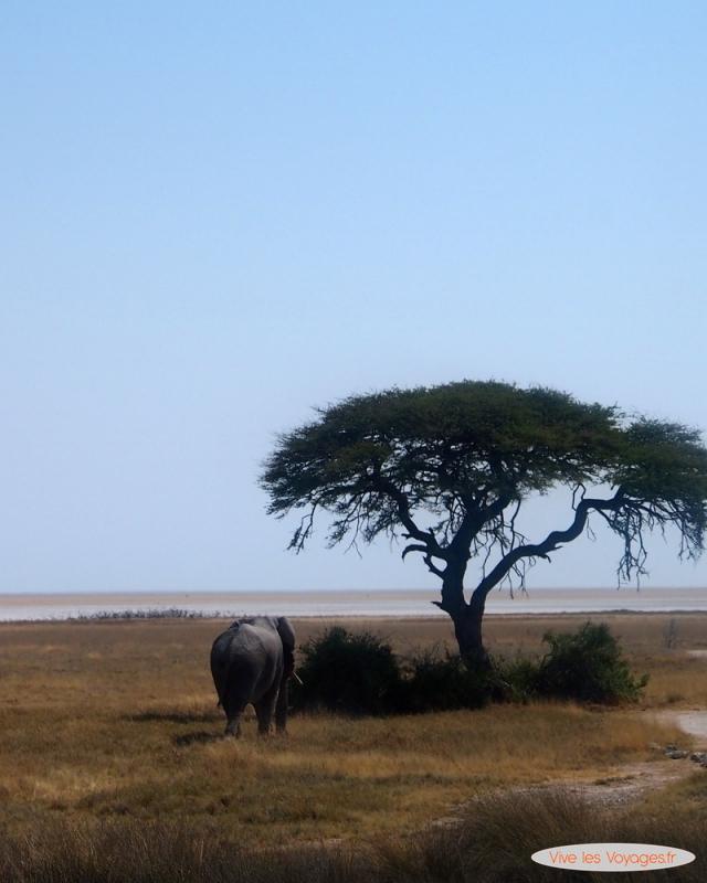 Namibie057