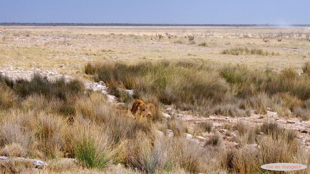 Namibie058