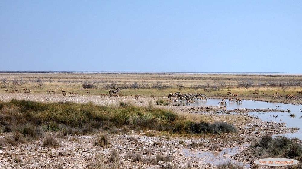 Namibie060