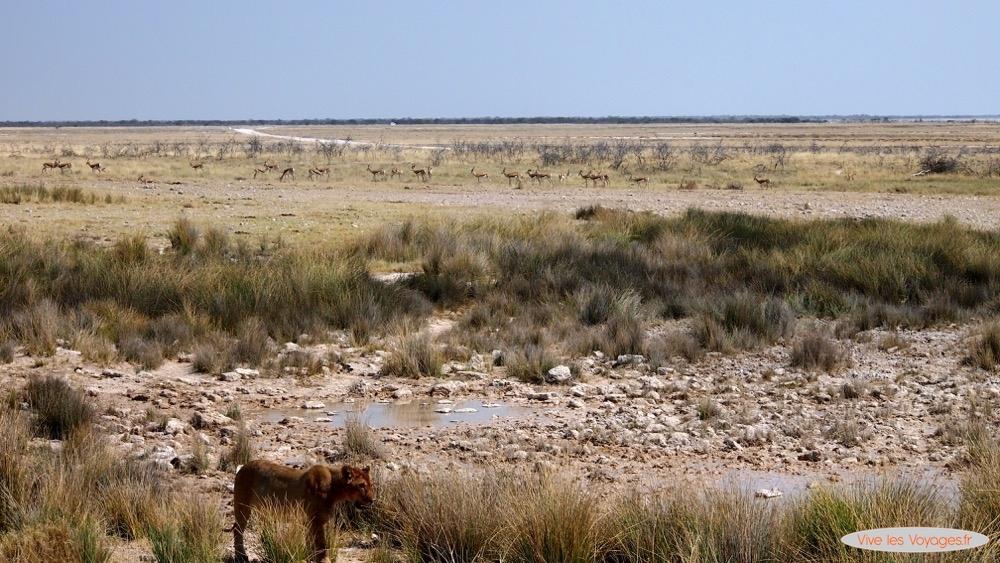 Namibie061