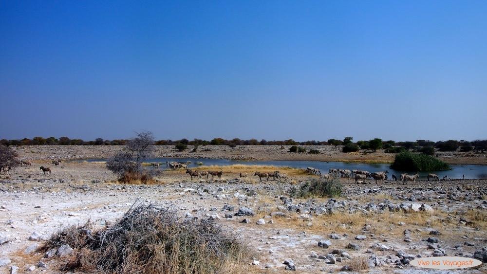 Namibie062