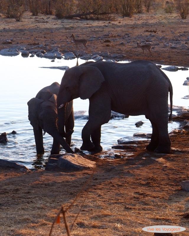 Namibie069