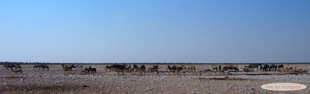 Namibie074