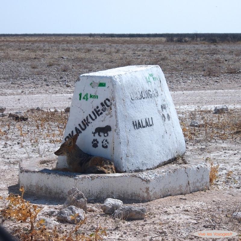 Namibie077