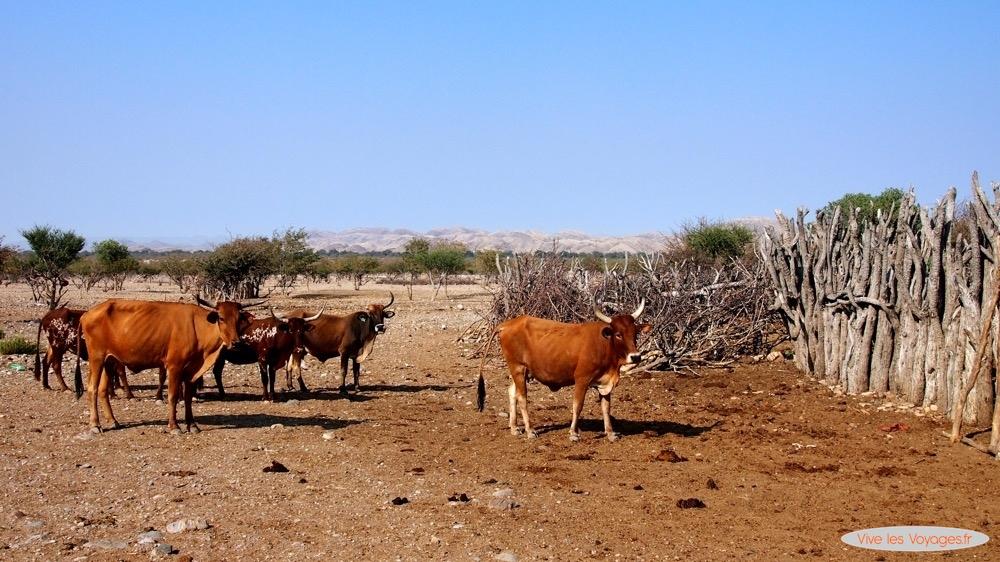 Namibie087