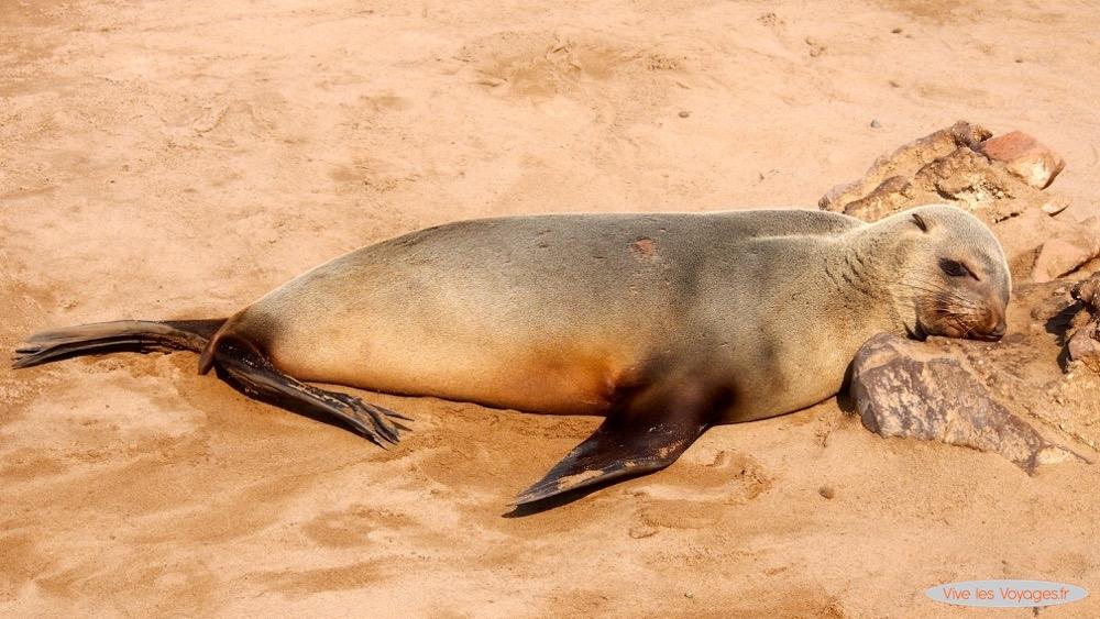 Namibie137