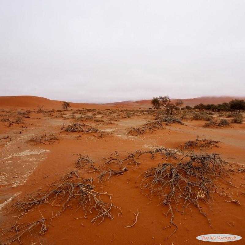 Namibie167