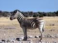 Namibie032