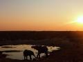 Namibie071
