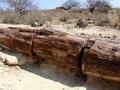 Namibie111