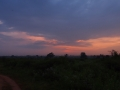 Sri Lanka088