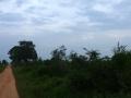 Sri Lanka095
